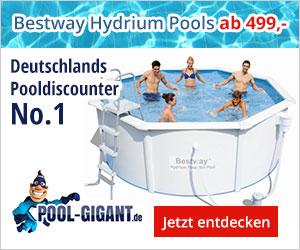 pool-gigant.de